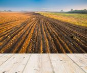 stock photo of plowed field  - Landscape with plowed field at sunrise with wooden floor on foreground - JPG