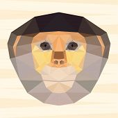 picture of marmosets  - Abstract polygonal geometric red - JPG
