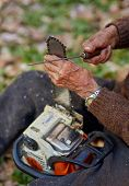picture of man chainsaw  - Old farmer doing maintenance work to his chainsaw - JPG