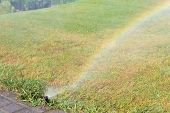 picture of sprinkler  - Sprinkler working on a green grass lawn