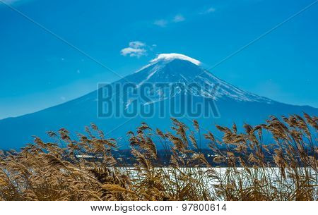 Mount Fuji And Kawaguchiko Lake, Japan