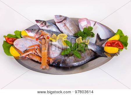 Seafood in Silver Restaurant Cloche , fish plate dinner studio isolated on white background