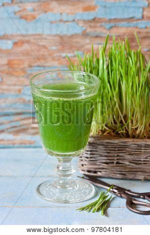 Wheat Grass Juice.