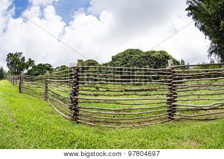 A homemade wooden ranch fence made from tree branches lined the outskirts of a ranch in the highlands of Hawaii.