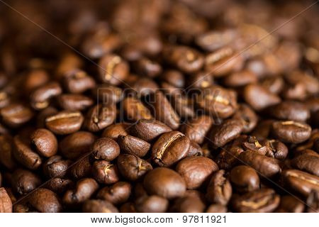 Brown roasted coffee beans closeup