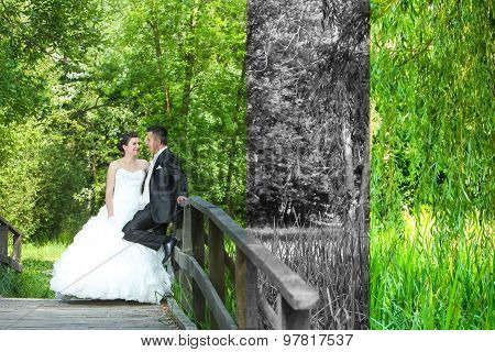 Bride And Groom Posing Abstract