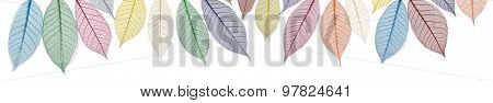 Rainbow colored skeleton leaves banner -