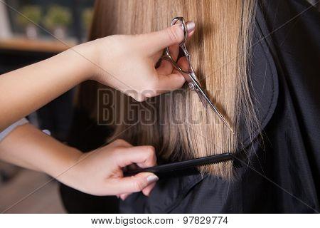 Hairdresser cut blond hair of a woman