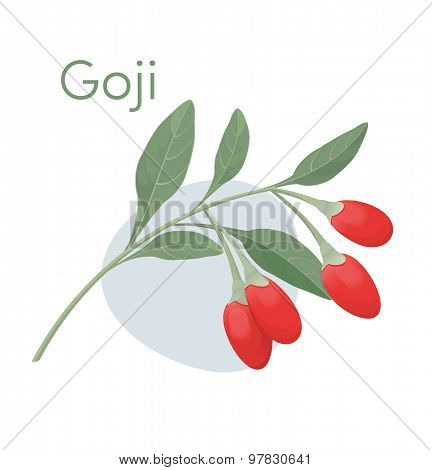 Goji berries.