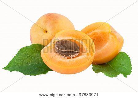 apricot fruit cut half fruit with core