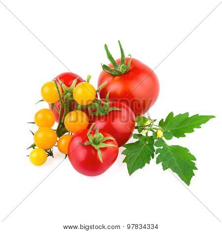 red and yellow organic tomato isolated on white