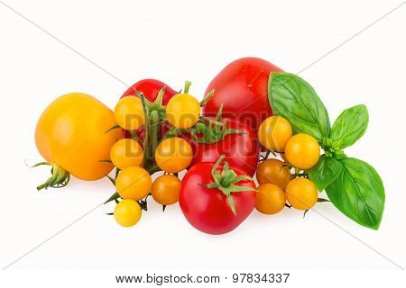 red and yellow tomatoes with basil leaf isolated on white