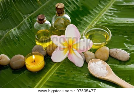 Health spa with massage oil and two orchid, candle on leaf