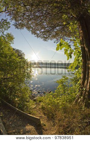 Lake Forest Dusk