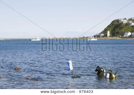 Scuba Diving 02