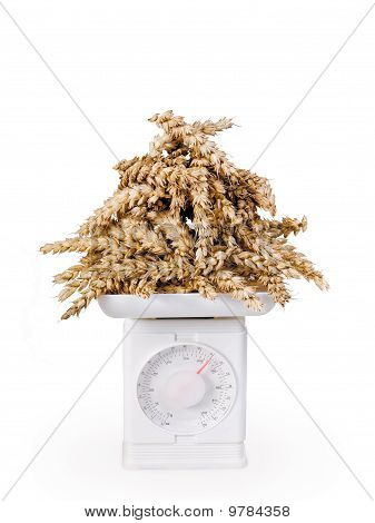weighing of grain