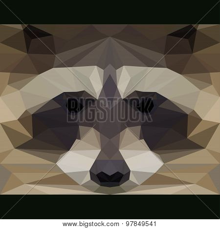 Wild Raccoon Stares Forward. Abstract Geometric Polygonal Triangle Illustration