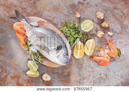 Fresh fish and shrimps
