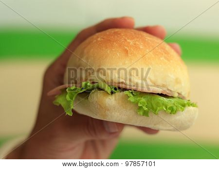 Natural Lighting Photo Of A Hand Holding Sandwich