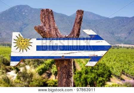 Uruguay Flag wooden sign with winery background