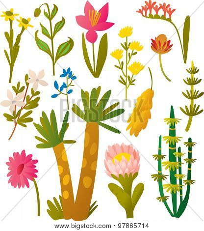 vector set flowers and plants, leaves and brunches