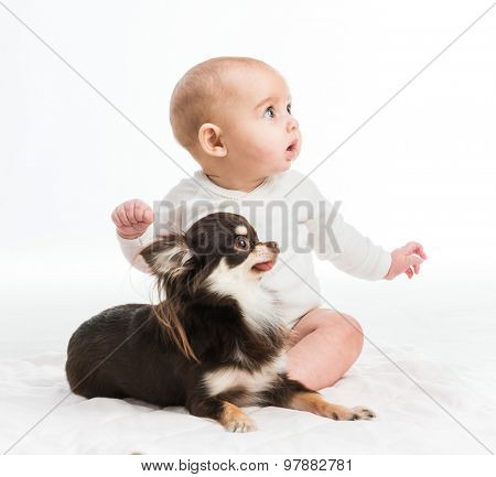 portrait of adorable five months smiling girl with her little dog isolated on white background