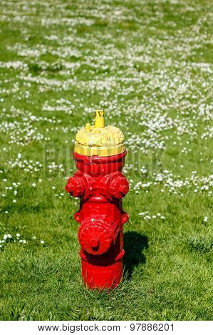 Red Fire Hydrant In A Flower Field