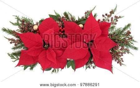 Poinsettia flower display with holly, winter greenery and gold bauble decorations over white background.
