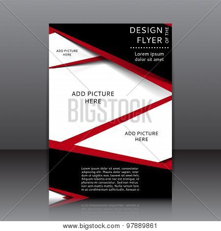 Vector Design Of The Flyer