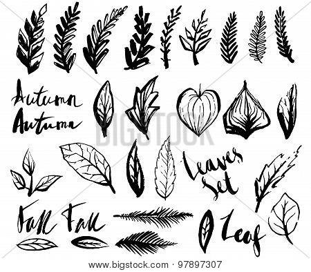 Doodle leaves set