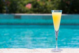 stock photo of mimosa  - Glass of Mimosa cocktail on the pool nosing at the tropical resort - JPG