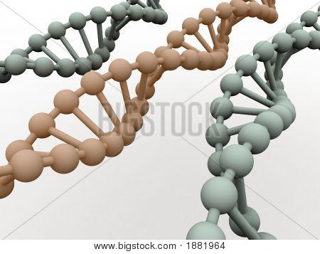 Gene In Dna.