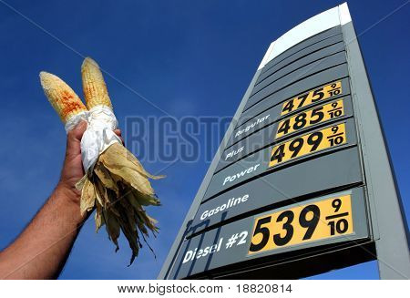 Alternative biofuel