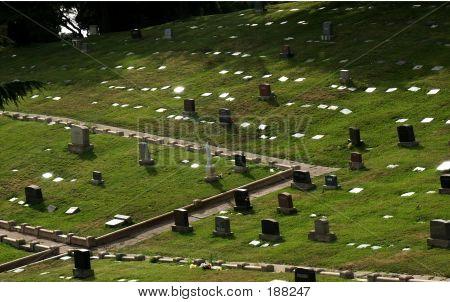 Reflections On Gravestones