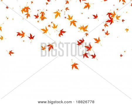 Illustrated falling autumn leaves