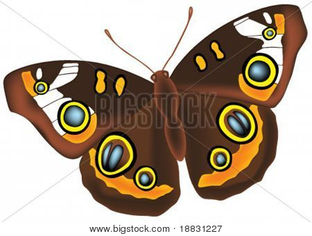 Full detailed brown vector butterfly