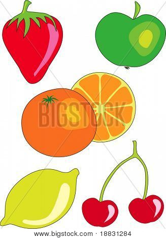 Vectorized citric fruit
