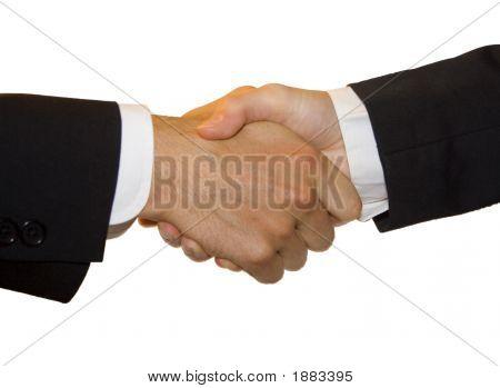 Hand Shake - Male To Female