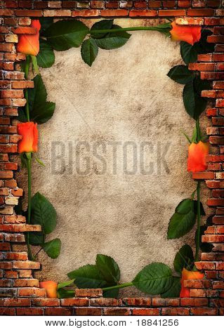 Roses on plaster wall background with brick wall framing