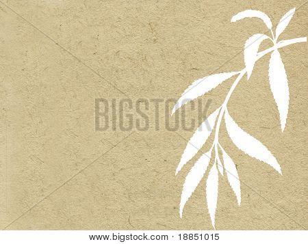 branch osier on grunge background