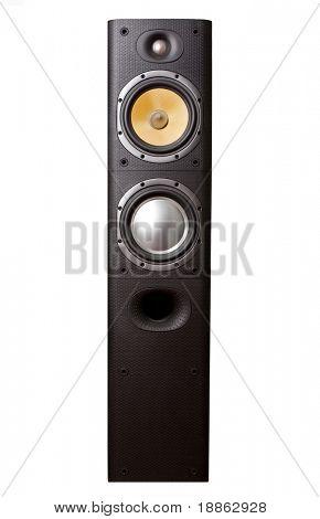 Big hi-fi speaker isolated on white