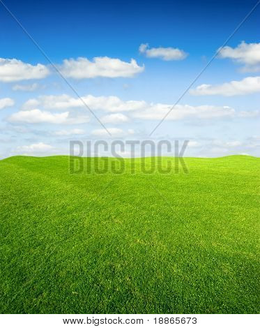 Green grass field and the blue sky
