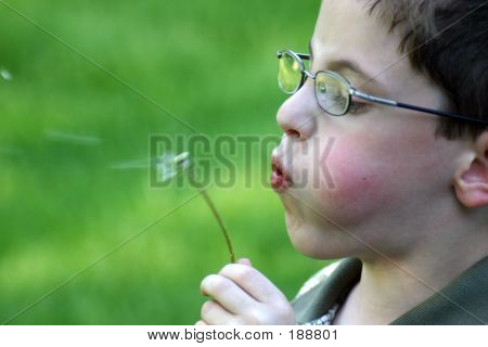 Boy Blowing Weed