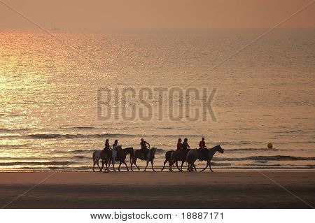 Men on horses on the sunset