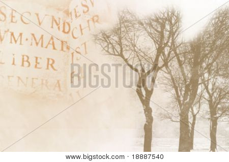 Vintage abstract background with old book and trees prints