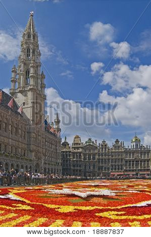 View over the Flower carpet at Brussels Grand place