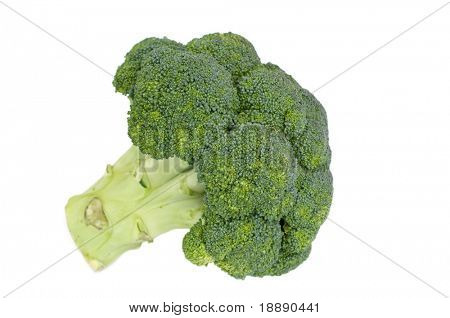 isolated fresh broccoli on a white background