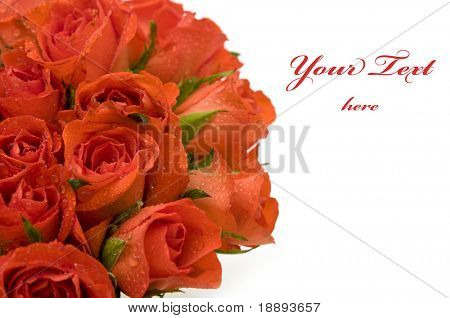 beautiful red roses bouquet with copy space