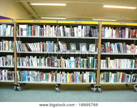 Novel section