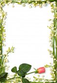 picture of pink rose  - Love letter frame made from flowers Vertical conceptual background - JPG